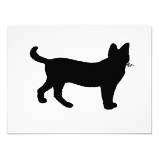 serval silhouette photo print