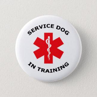 SERVICE DOG IN TRAINING 6 CM ROUND BADGE