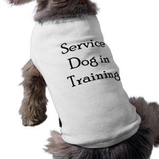 Service Dog in Training Sleeveless Dog Shirt