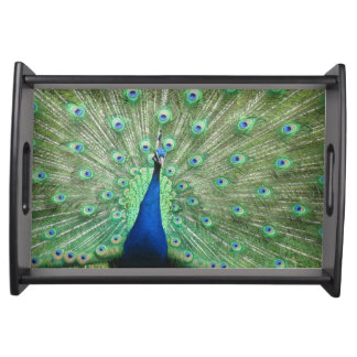 Serving Tray - Proud Peacock