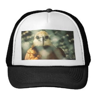 Set Me Free Cap