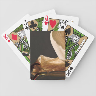set sails bicycle playing cards