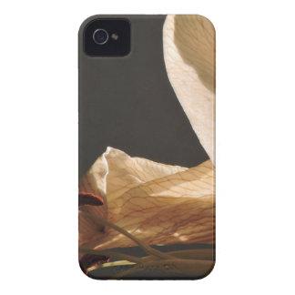 set sails iPhone 4 Case-Mate cases