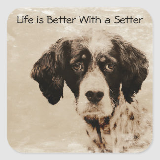 Setter Love Square Sticker