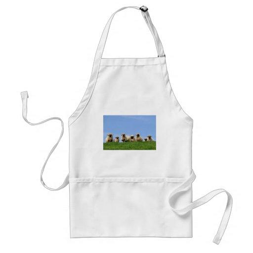 seven curious rasta sheep apron