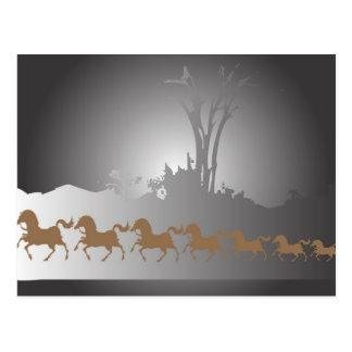 Seven Horses Postcard