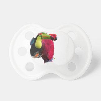 Seven Tropical Bird's Dummy