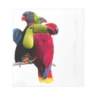 Seven Tropical Bird's Notepad