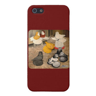 Seven Trumpeter Pigeons iPhone 5/5S Cover