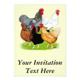 Sex-linked Chickens Quintet Custom Invitations
