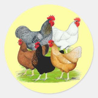 Sex-linked Chickens Quintet Round Sticker