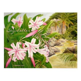Seychelles Lily Postcard