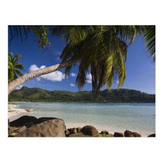 Seychelles, Mahe Island, Anse a la Mouche Postcard