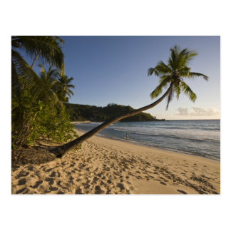Seychelles, Mahe Island, Anse Takamaka beach, Postcard