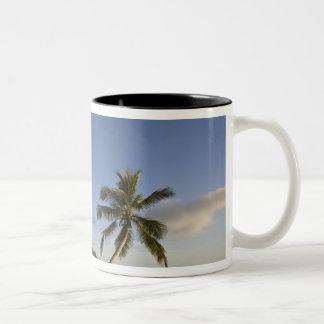 Seychelles, Mahe Island, horizontal palm, Two-Tone Mug