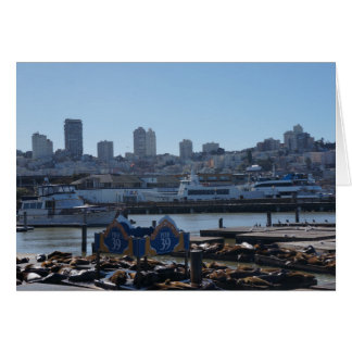 SF City Skyline & Pier 39 Sea Lions Card