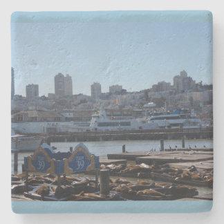 SF City Skyline & Pier 39 Sea Lions Coaster