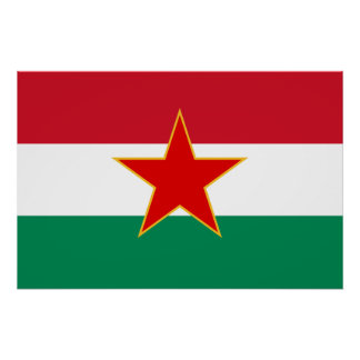 Sfr Yugoslav Hungarian Minority, ethnic flag Print