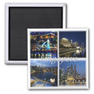 SG * Singapore - Singapore by Night Magnet