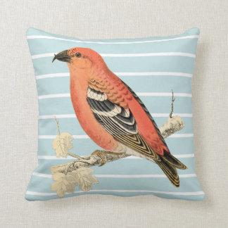 "Shabby Chic Bird Pillow (Cotton 16"" x 16"")"