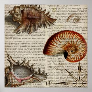 shabby chic vintage sea shells beach nautical poster
