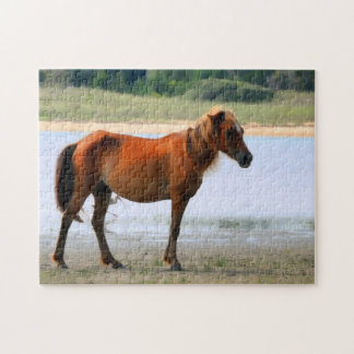 Shackleford Banks Horse Jigsaw Puzzle
