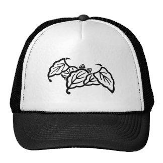 Shade 蝙 蝠 Kashiwa Cap