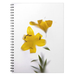 Shade forms flowers note pad notebooks