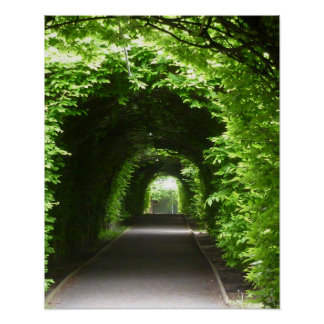 Shaded Botanic Garden Arbor Poster