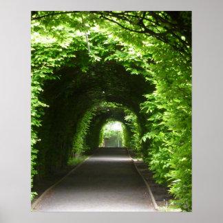 Shaded Botanic Garden Arbor Poster