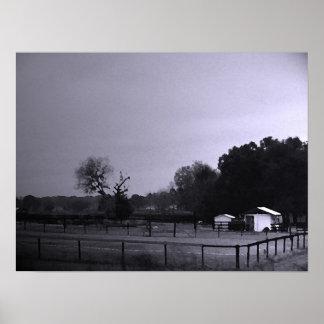 Shades of Gray   ~Print~ Poster