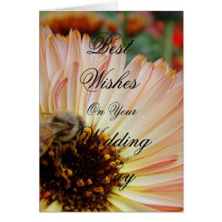 Shades of Honey Greeting Card