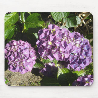 Shades of Purple Hydrangea Mouse Pad