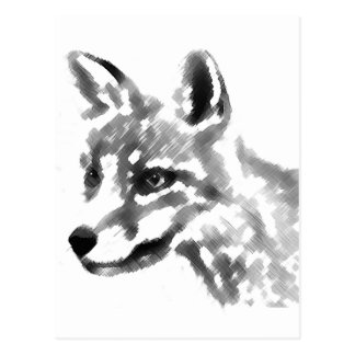 Shadow Fox Postcard