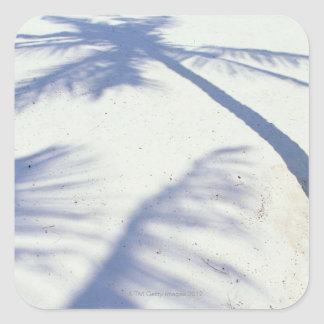 Shadow of Palm Tree 2 Square Sticker