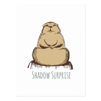 Shadow Surprise Post Card