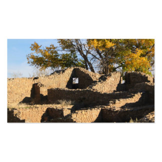 shadowed aztec structure with window pack of standard business cards