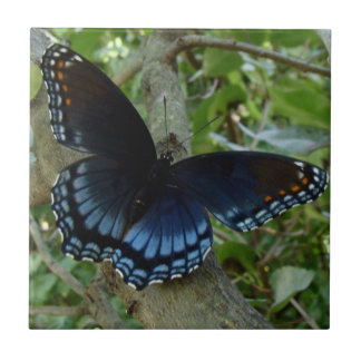 Shadowed Blue Butterfly Ceramic Tile