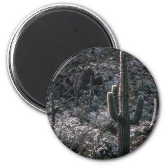 Shadowed Rocks Refrigerator Magnets