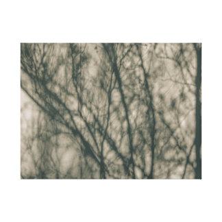 Shadows of Winter Foliage Canvas Print