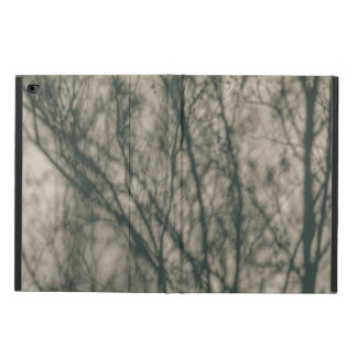 Shadows of Winter Foliage Powis iPad Air 2 Case