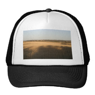 Shadows On Wheatfield Harvested Swathes In Middle Trucker Hat