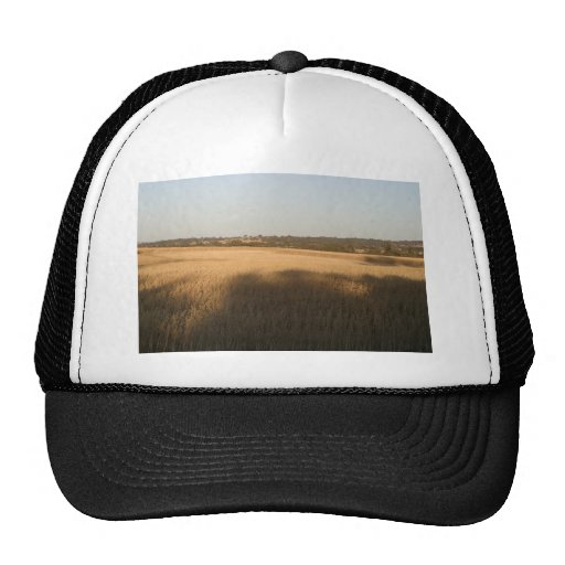 Shadows On Wheatfield Harvested Swathes In Middle Mesh Hats