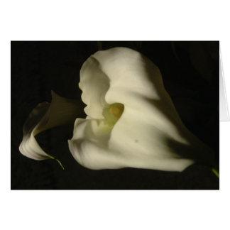 Shadowy Callas Card