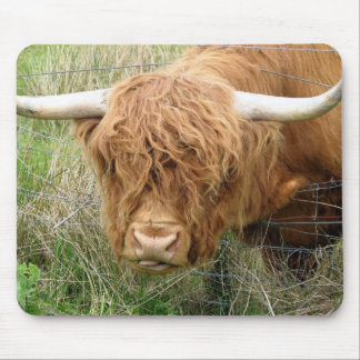 Shaggy Highland Cow Mouse Pad