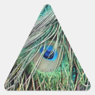 Shaggy Peacock Eye Feathers Triangle Sticker