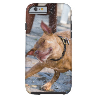Shake! Tough iPhone 6 Case
