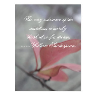 Shakepeare Quote ~ Shadow of a Dream Postcard