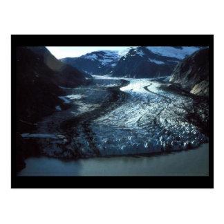 Shakes Glacier in Southeast Alaska Postcard
