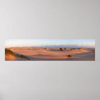Shallow Inlet Dunes Panorama Poster